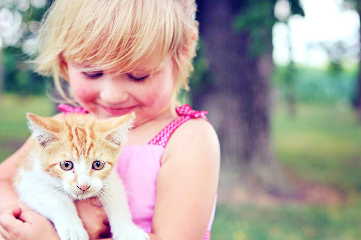 kid little girl holding a cat | Ideas On How to Make Money as A Kid | Inside Your IRA | how kids make money