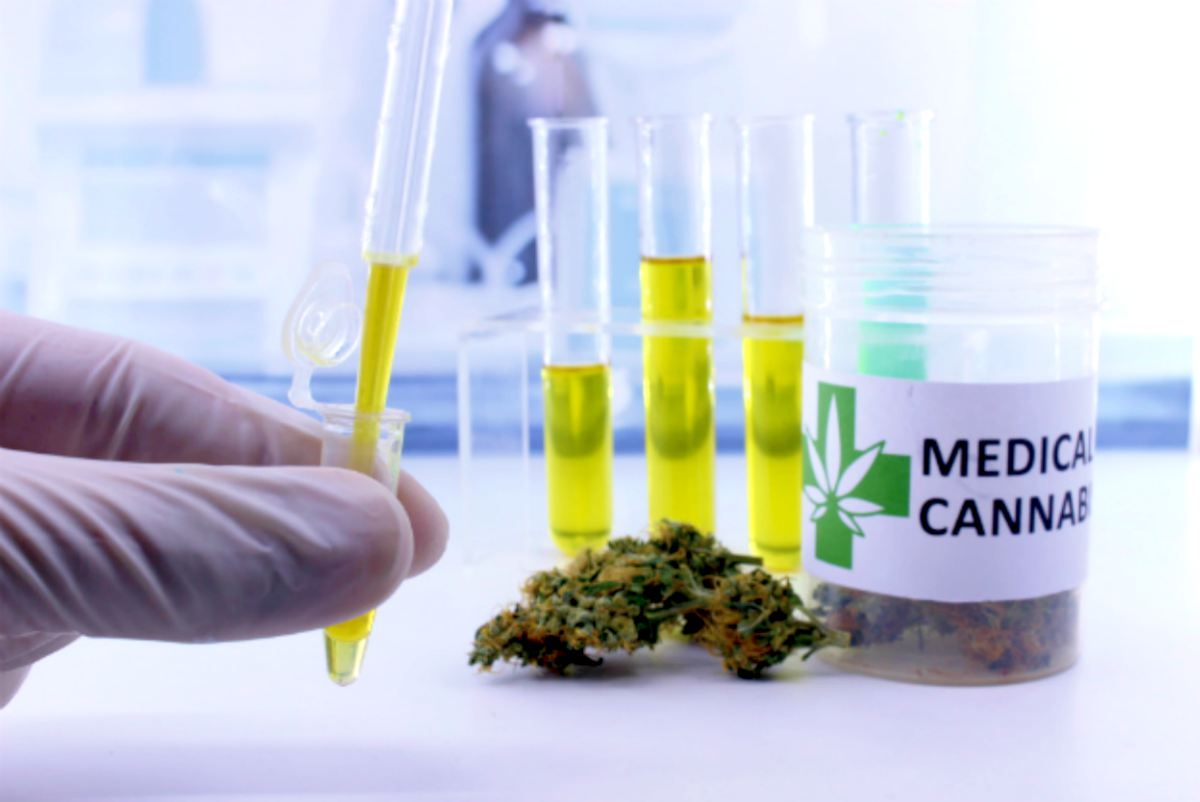 marijuana on laboratory | Is Investing In Marijuana Stocks Beneficial? | Inside Your IRA | medical marijuana