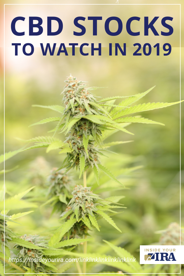 CBD Stocks To Watch In 2019 | Inside Your IRA https://insideyourira.com/cbd-stocks-watch-2019/