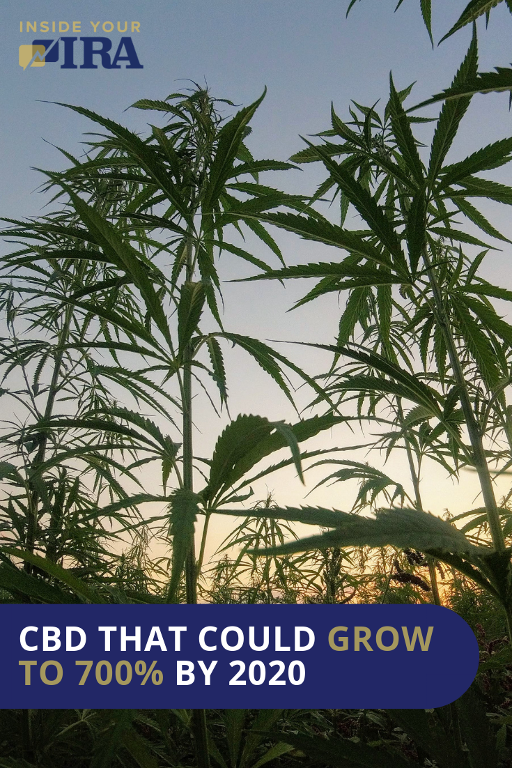 CBD Investments Could Grow To 700% By 2020 | Inside Your IRA https://insideyourira.com/cbd-investments-grow-2020/
