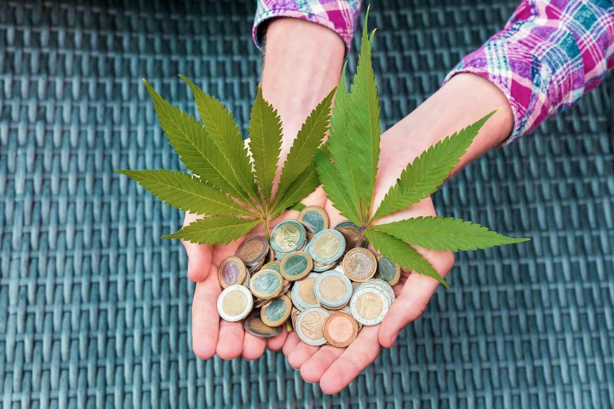 hands holding euro money and marijuana | Is Investing In CBD Oil Stocks Beneficial? | Inside Your IRA | cbd stocks